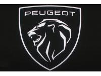 Peugeot Dealerwebsite